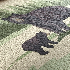 Birch Bear Quilt Collection by Donna Sharp